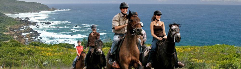 Horse riding in the Garden Route