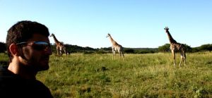 Mark and some giraffes at Phinda Private Game Reserve