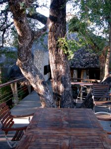 Deck at Leadwood Lodge, Sabi Sand Game Reserve