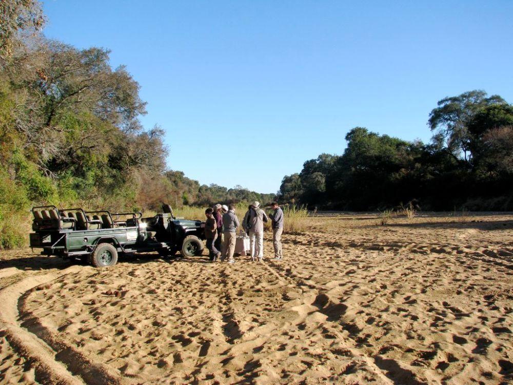 Ngala Safari Lodge game drive, Sabi Sand Game Reserve