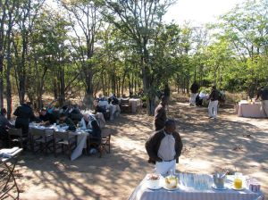 Our breakfast in the bush at Ngala Safari Lodge