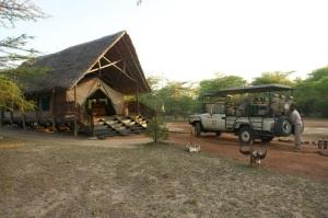 Impala Camp